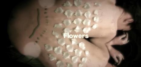 Flowers (creació de video)